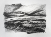 Riverbank at Skeffling. Graphite on paper, 30x22 inches.