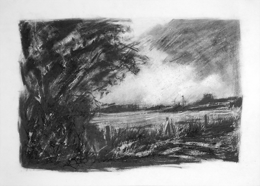 The pasture at Marsh Lane. Graphite on paper, 30x22 inches.