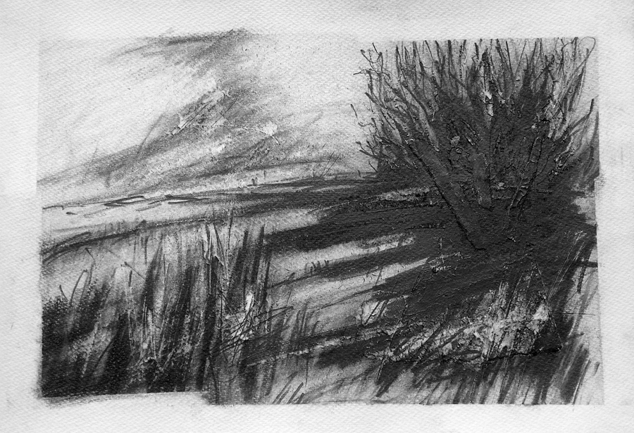 Long shadows, Marsh Road. Graphite on paper, 22x15 inches.