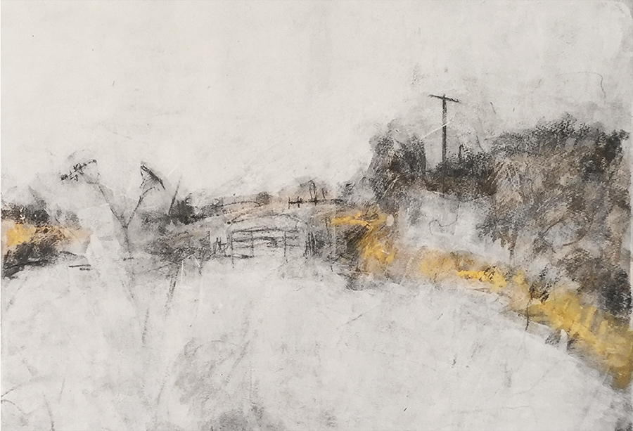 Hay meadow at Auster Grange Farm. Graphite, gesso and oil bar on paper, 22x15 inches.