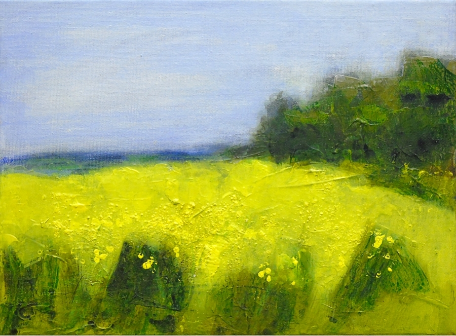 Rapefield at Cold Harbour Farm. Acrylic on canvas, 12x9 inches.